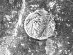 На Марсе найден загадочный предмет, похожий на монету (фото NASA)
