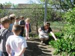 Тематическое занятие по первоцветам в эколого-биологическом центре «Эко-Дон» Калачёвского района Волгоградской области