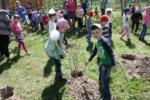 ЗАТО Северск принял активное участие в проекте «Лес Победы»